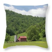 Red Barn Yellow Buttercups Throw Pillow