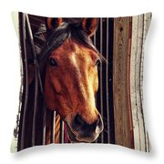Red Bay Throw Pillow