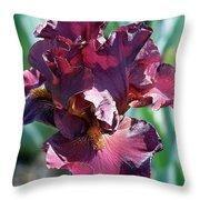Red Bearded Iris Photograph Throw Pillow