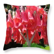Red Bell Flowers. Sunny Spring Throw Pillow