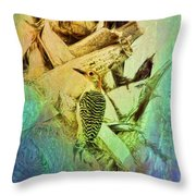 Red Bellied Dream Throw Pillow