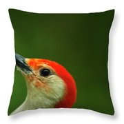 Red-bellied Throw Pillow
