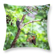 Red-bellied Woodpecker 2016 14 Throw Pillow