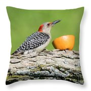 Red-bellied Woodpecker At The Feeder Throw Pillow