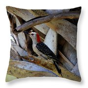 Red-bellied Woodpecker Hides On A Cabbage Palm Throw Pillow