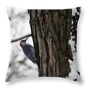 Red Bellied Woodpecker No 1 Throw Pillow