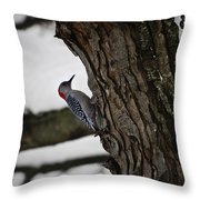 Red Bellied Woodpecker No 2 Throw Pillow