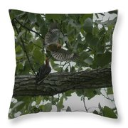Red-bellied Woodpeckers Throw Pillow