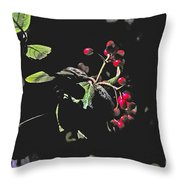 Red Berries And Foliage Throw Pillow