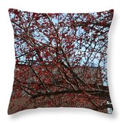 Red Berries In Tree Throw Pillow