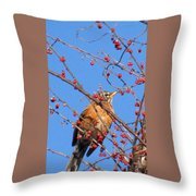 Red Berry Robin Throw Pillow