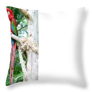 Red Bird And Pink Flowers Throw Pillow