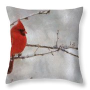 Red Bird Of Winter Throw Pillow by Jeff Kolker