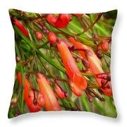 Red Blossoms Of A Firecracker Plant Throw Pillow