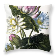 Red, Blue, And White Lotus Flowers Throw Pillow
