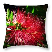 Red Bottle Brush Throw Pillow