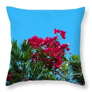 Red Bougainvillea Glabra Vine Throw Pillow