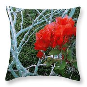 Red Bougainvillea Thorns Throw Pillow