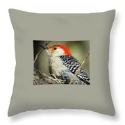 Red-breasted Woodpecker 1 Throw Pillow