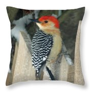 Red Breasted Woodpecker On Fence Throw Pillow