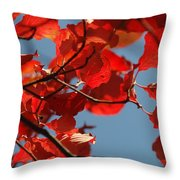 Red Brown And Blue Throw Pillow