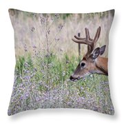 Red Bucks 4 Throw Pillow by Antonio Romero
