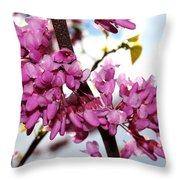 Red Bud 2011-1 Throw Pillow