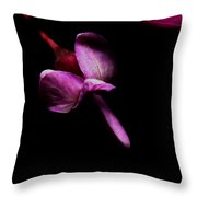 Red Bud 2011-14 Throw Pillow