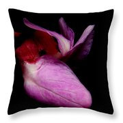 Red Bud 2011-17 Throw Pillow