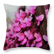 Red Bud 2011-3 Throw Pillow