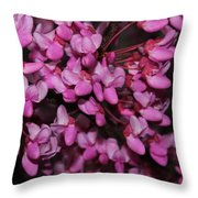 Red Bud 2011-4 Throw Pillow