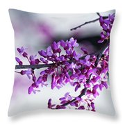 Red Bud Branch Throw Pillow