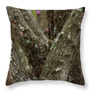 Red Bud Row Throw Pillow