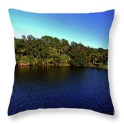 Red Bugg Slough Throw Pillow