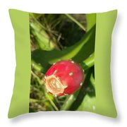 Red Bulb Throw Pillow