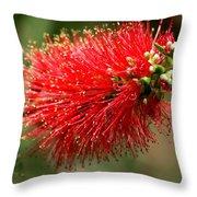 Red Burst Throw Pillow by Valeria Donaldson