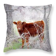 Red Calf In Winter Brush Throw Pillow