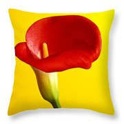 Red Calla Lilly  Throw Pillow
