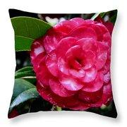 Red Camellia Throw Pillow