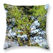 Red Cardinal In Tree Throw Pillow