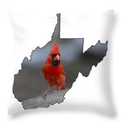Red Cardinal Looking For Food Throw Pillow by Dan Friend