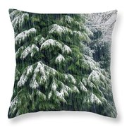 Red Cedar And Snow Throw Pillow