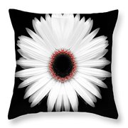 Red Center Daisy Throw Pillow