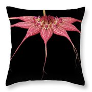Red Chimney #2 Throw Pillow