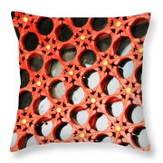 Red Chinese Window Throw Pillow