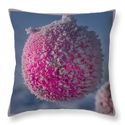 Red Christmas Decoration With Frost In Winter Throw Pillow
