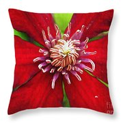 Red Clematis Throw Pillow