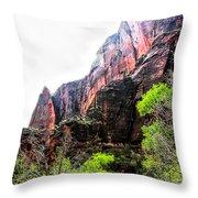 Red Cliffs Zion National Park Utah Usa Throw Pillow
