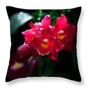 Red Cluster Throw Pillow