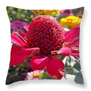 Red Cone Flower Throw Pillow